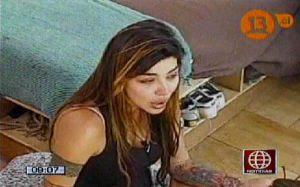 Televisión chilena, Pareja perfecta, Televisión, Angie Jibaja, Pamela Díaz, Rodrigo Wainraihgt, Televisión