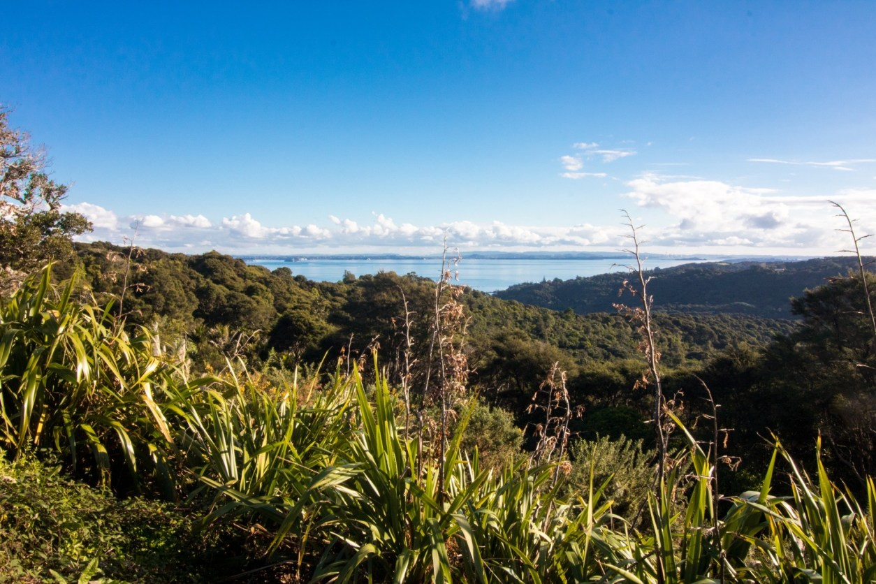 Waiheke Island Auckland. 10 Awesome Things To Do In North Island New Zealand. Places to visit in North Island New Zealand. What to See in North Island New Zealand. Travel Blog. Tours. Itinerary. Skyjump Auckland. Sky Tower. Waiheke Island. Hobbiton. Skydiving over Lake Taupo. Geothermal activity. OGO zorbing Rotorua. Maori cultural experience. Jet boat Huka Falls. Tongariro Alpine Crossing. Glowworms Waitomo Caves. Wellington. Click through to read more...