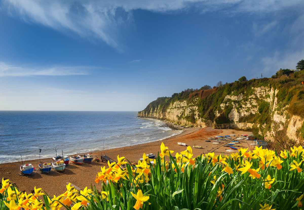 beach-in-beer-on-sunny-day-places-to-visit-in-devon