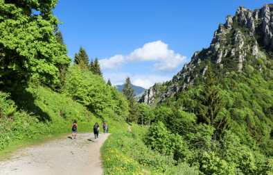 girls-walking-in-luscious-green-mountains-in-the-dolomites-italian-alps-hike-to-rifugio-pernici-valle-di-ledro-lago-di-ledro