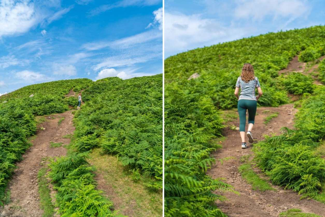 young-woman-in-workout-gear-walking-up-hill-covered-in-fern-on-a-summers-day