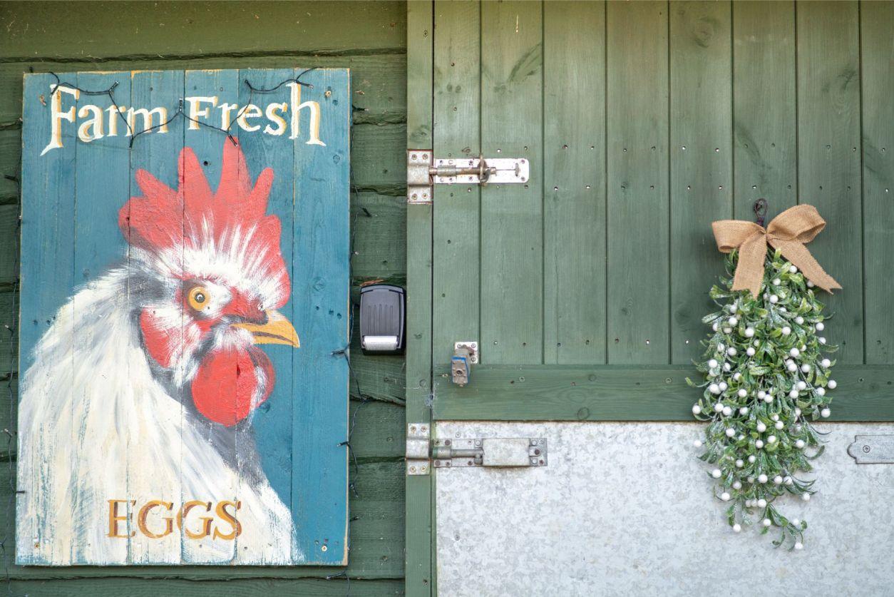 a-vintage-farm-fresh-eggs-hen-print-against-a-stable-door-in-a-farm-at-christmas