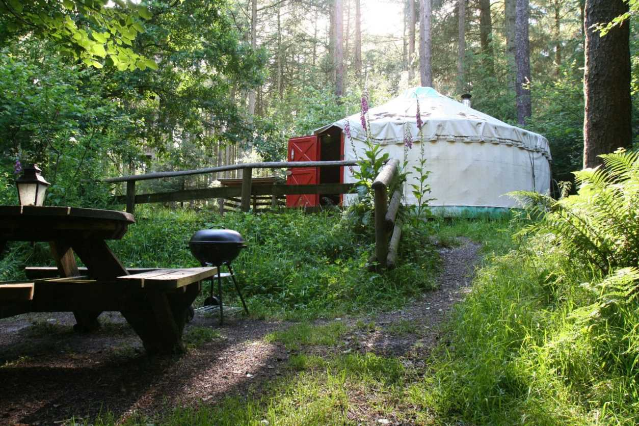 picnic-table-and-bbq-beside-yurt-in-forest-marthrown-of-mabie-yurt-in-dumfries-and-galloway
