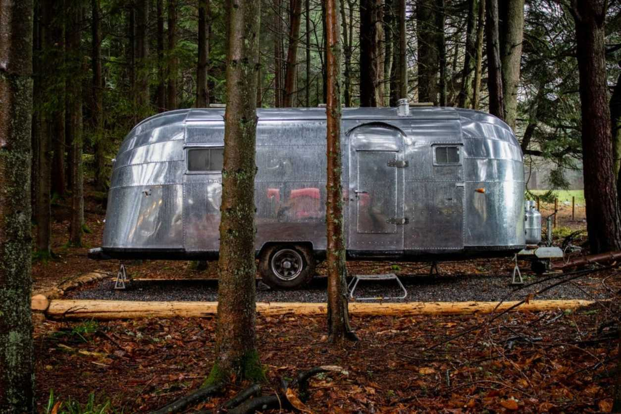 vintage-airstream-in-forest-the-saw-mill-airstream-aberdeenshire