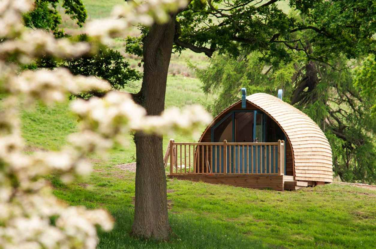 langley-glamping-cabin-with-decking-by-tree-in-field-glamping-northumberland