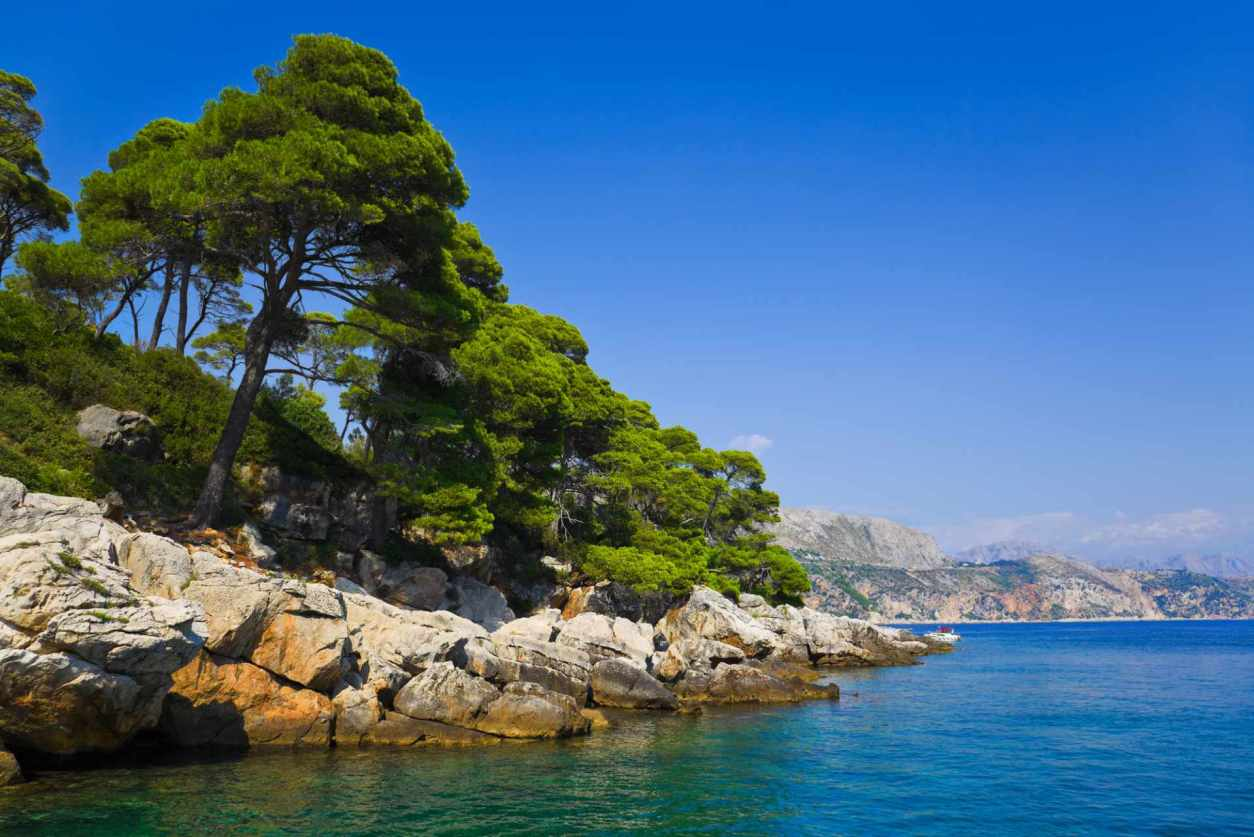 trees-and-rocks-by-blue-sea-on-lopud-island