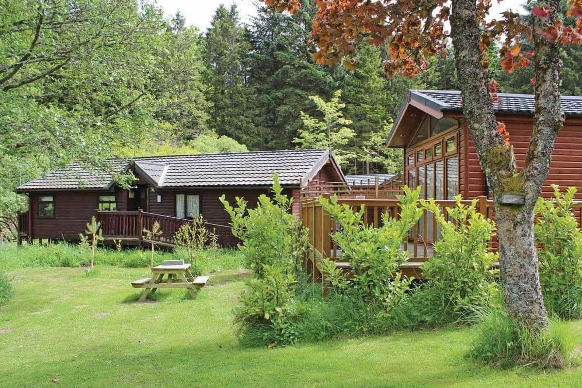 border-forest-lodges-in-field-surrounded-by-trees