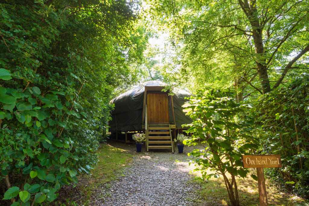 gravel-path-leading-to-orchard-yurt-in-woodland