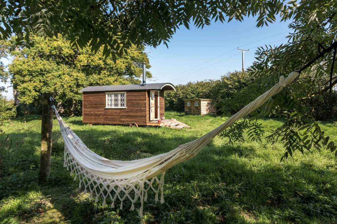 hammock-in-front-of-withywood-shepherds-hut-in-field-on-merrion-farm-glamping-sussex
