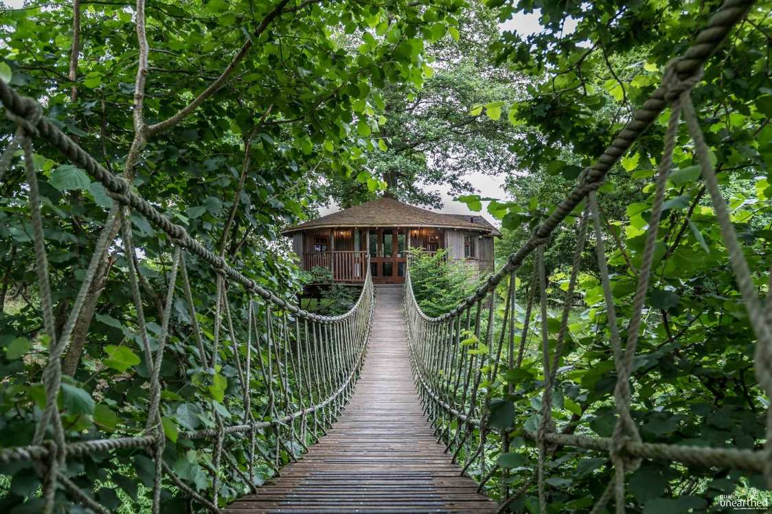 rope-bridge-leading-to-bensfield-treehouse-in-woodland-glamping-sussex