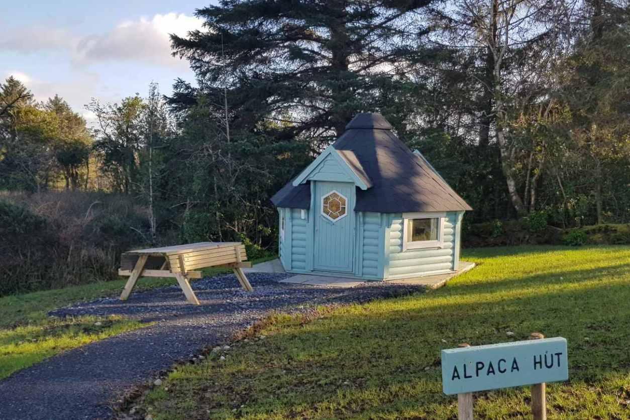 blue-scandinavian-alpaca-hut-by-forest-glamping-galway