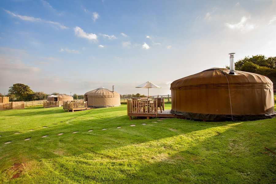 calwich-under-canvas-yurts-in-field