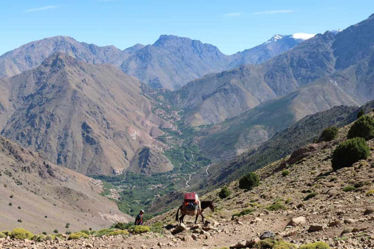 horse-walking-in-imlil-in-the-high-atlas-mountains-marrakech-itinerary