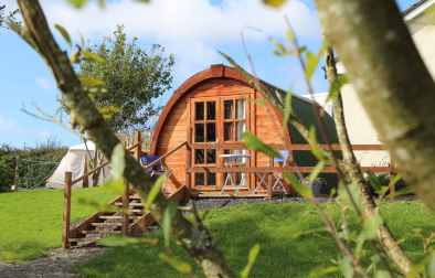 shannon-estuary-pod-at-top-of-garden