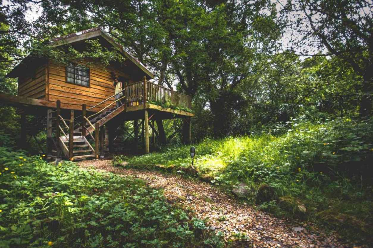 woman-walking-down-steps-of-teapot-lane-treehouse-in-woods-glamping-sligo
