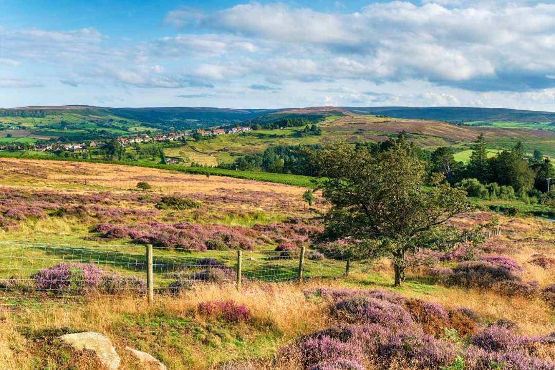 north-york-moors-national-park-day-trips-from-york