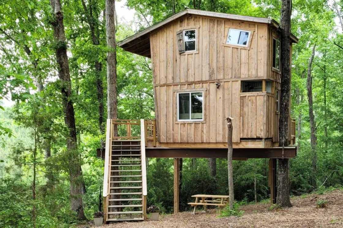exterior-of-crooked-shutter-treehouse-treehouse-rentals-nc