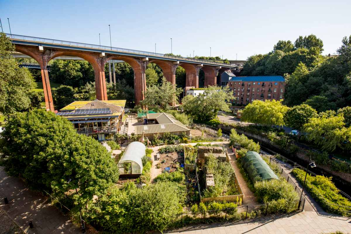 ouseburn-farm-free-things-to-do-in-newcastle