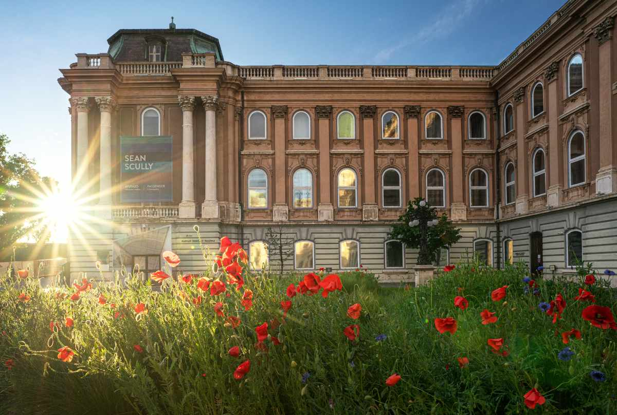 red-poppies-in-front-of-the-hungarian-national-gallery-romantic-things-to-do-in-budapest
