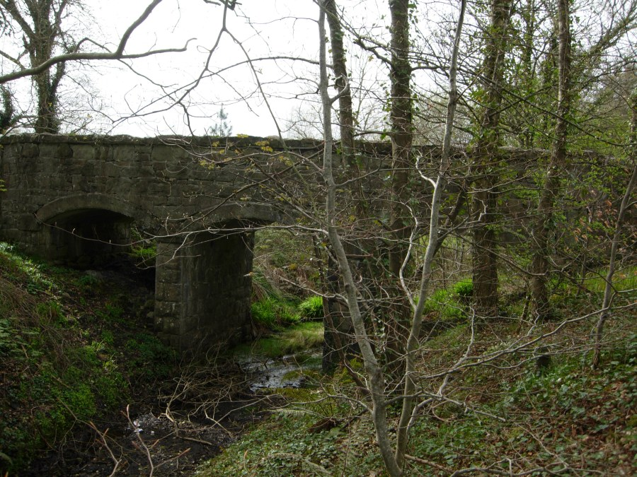 Bruckless Stone Bridge