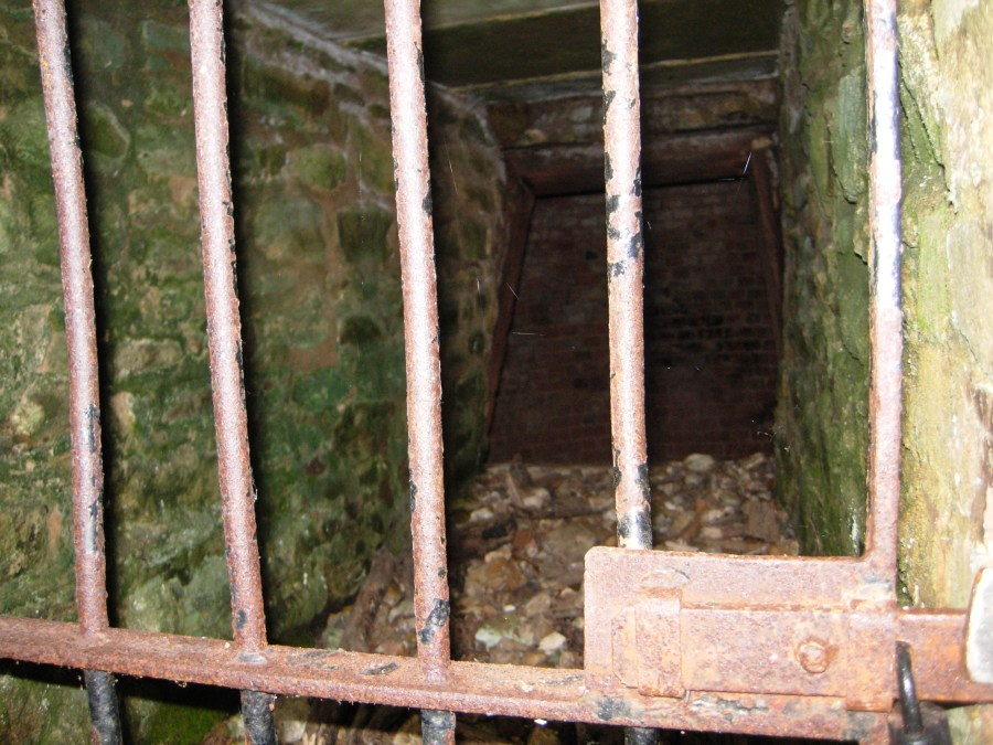 Looking into the ice house