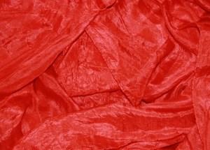 Ab Morgen trage ich Rot