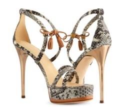 Frauen lieben einfach Schuhe