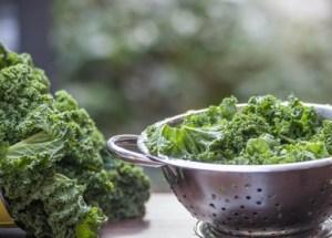 Leckere Grünkohlsuppe – Rezept