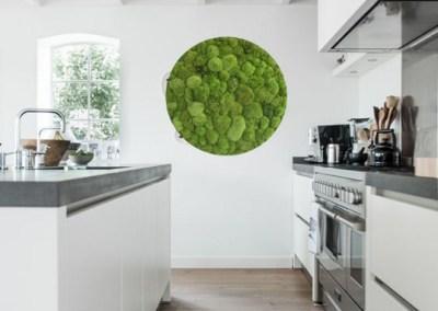 Moosbild in der Küche