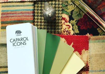 Caparol Icons