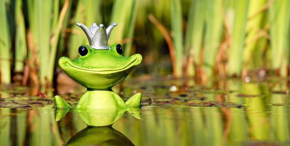 Eine grüne Froschfigur mit einer silbernen Krone sitzt in einem Teich.