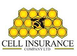Cell Insurance Zimbabwe
