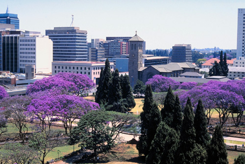 Image result for zimbabwe harare