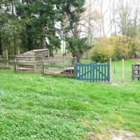 Enclos à chèvres