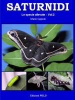 SATURNIDI – Le specie allevate vol. 2
