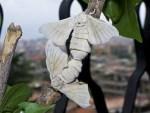 Baco da seta  (Bombyx mori)