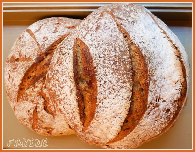 Pain campagnard-country bread