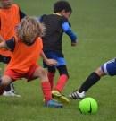 Summer Holiday Football Schools @FTFC