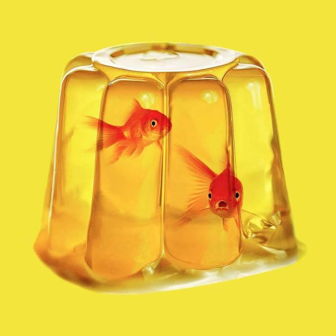 balık-jole