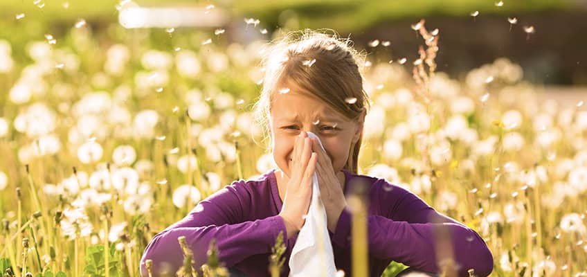 Alergia | Farma Natura