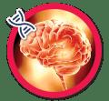 Bônus Potência Cerebral