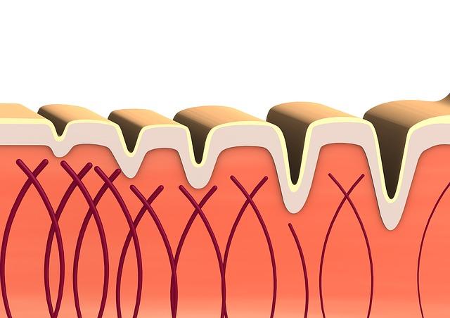 Benefici per pelle, ossa e tutto l'organismo con il collagene