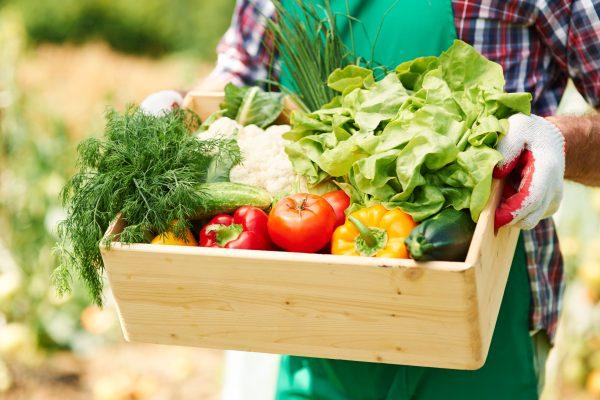 Buenas prácticas para una alimentación sostenible