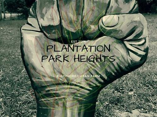 The Plantation Park Heights Urban Farm Expanding!