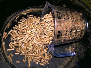 pellet rations for horses, Senior Horse Nutrition