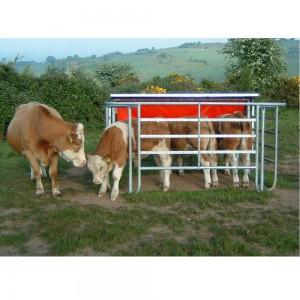Cattle Corner Tips