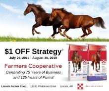 Purina Strategy Horse Feed