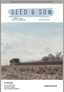 Seed and Sow Lifestyle Magazine