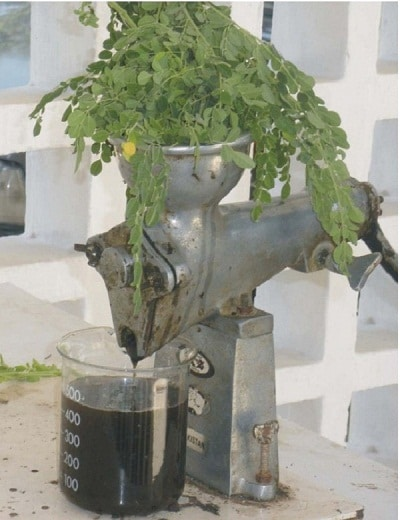 Leaf juice extraction machine