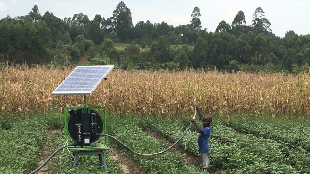 One thousand solar pumps!
